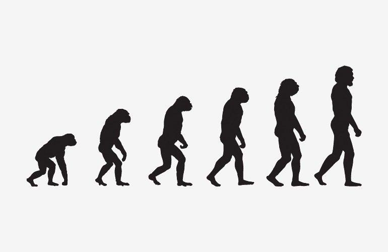 Argument against evolution